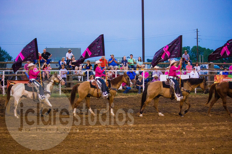 Chicks-n-Spurs Drill Team at the Pink for Peitz  Benefit Rodeo